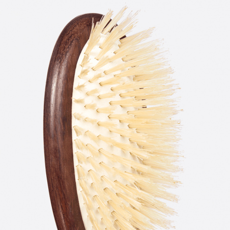Hairbrush large model thumb-3